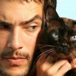 Черты характера мужчины. Каждый мужчина — немного кот.